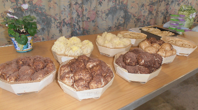 Traditional bread in different forms